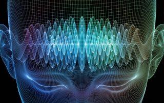 brain waves and diet