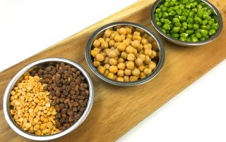 Chickpeas photo