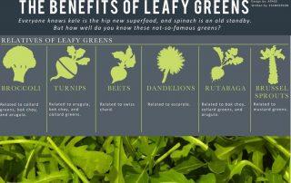 leafy veggies infographic